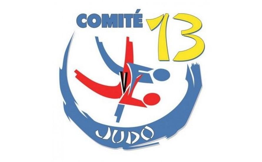 Logo du BOUCHES DU RHONE JUD
